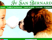 Iv San Bernard